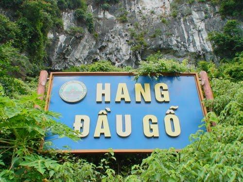 Du lịch Hạ Long – hang Đầu Gỗ 2 ngày 1 đêm