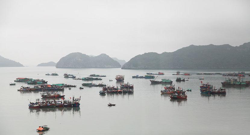 Bức tranh thủy mặc huyền ảo của vịnh Hạ Long trong làn sương mù