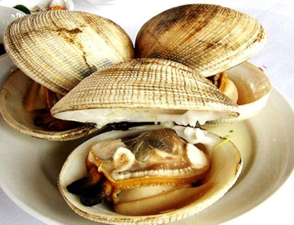 Ngán- hải sản ngon hấp dẫn ở Hạ Long