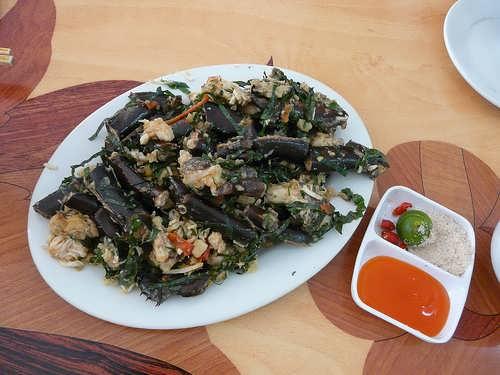 Sam biển- Món ngon hấp dẫn du lịch Hạ Long