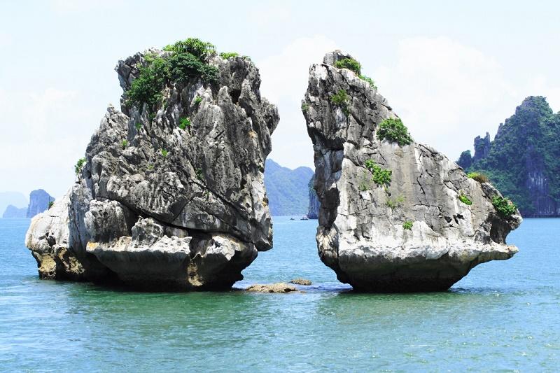 Hòn Gà Chọi - Một trong những biểu tượng của vịnh Hạ Long