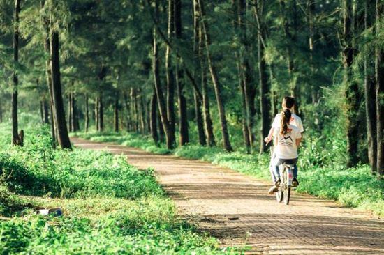 """Lang thang """"con đường tình yêu"""" lãng mạn và đẹp"""