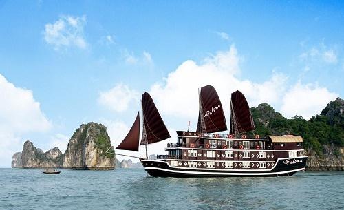 Du thuyền Hạ Long Paloma