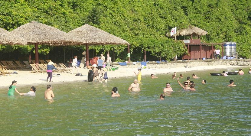 Tắm biển trên vịnh Hạ Long