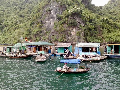 Ghé thăm làng chài Ba Hang Hạ Long